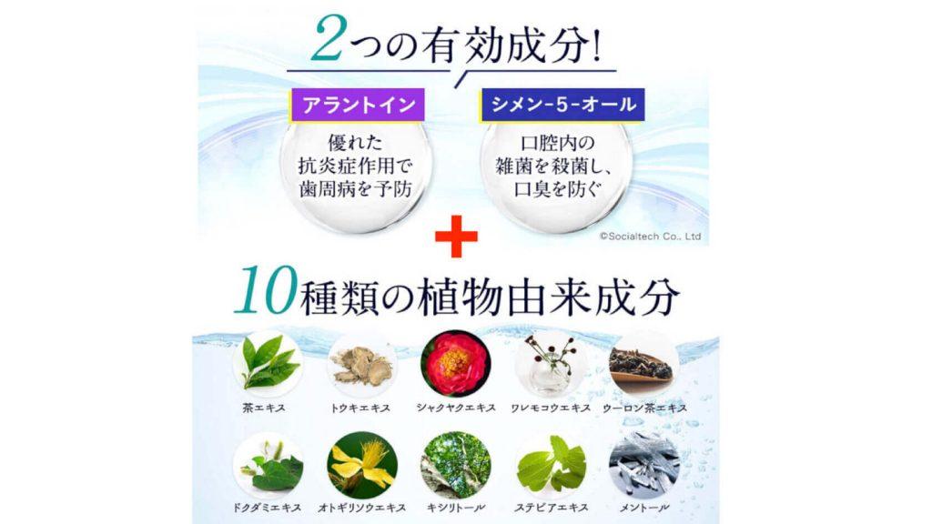 効果の秘密!2つの有効成分と10種の植物由来成分